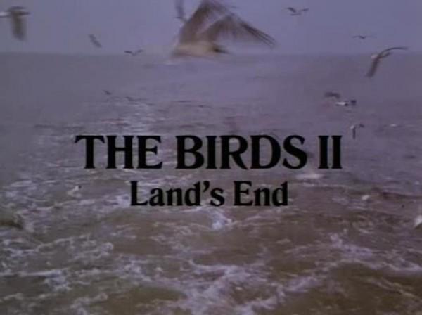 birds-lands-end