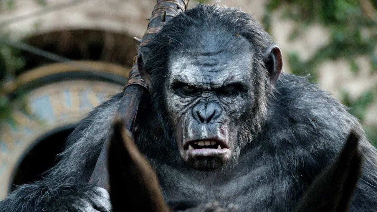 planet-of-the-apes-koba