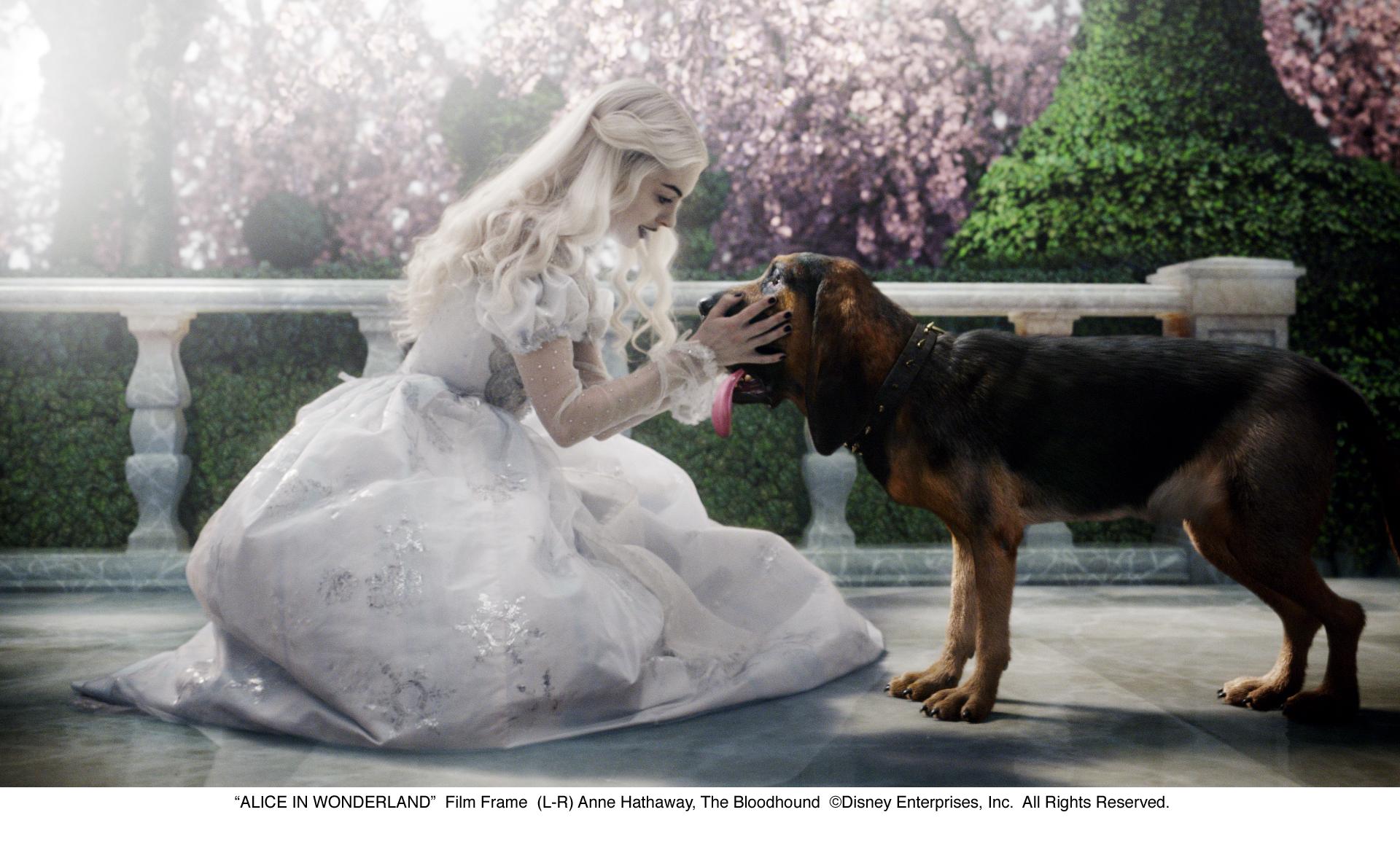 http://www.collider.com/wp-content/uploads/alice-in-wonderland-movie-image-7.jpg