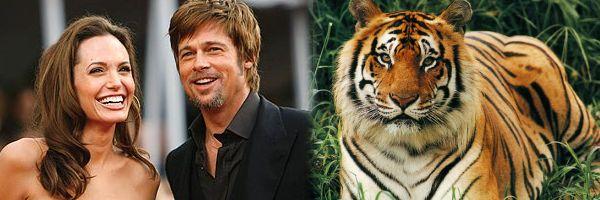 angelina_jolie_brad_pitt_the_tiger_slice