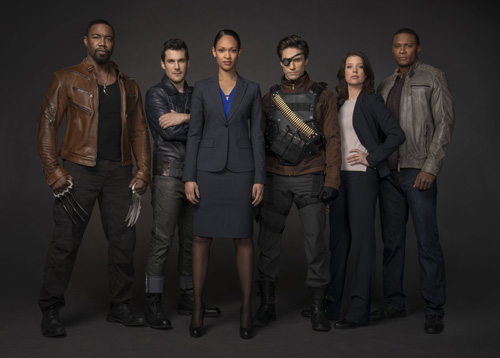 arrow-suicide-squad-michael-jai-white-sean-maher-cynthia-addai-robinson-michael-rowe-audrey-marie-anderson-david-ramsey