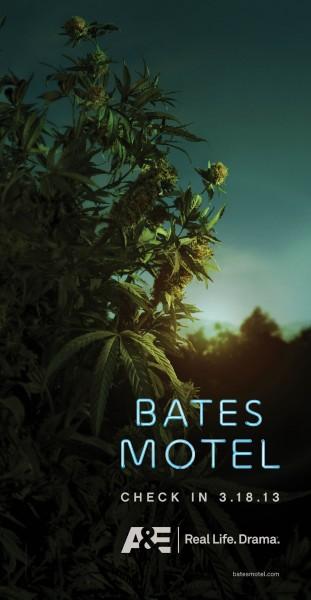 bates-motel-poster-plant