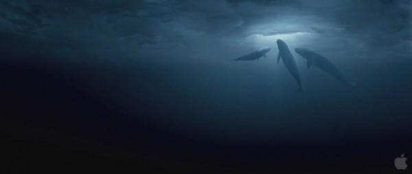 big-miracle-movie-image-01