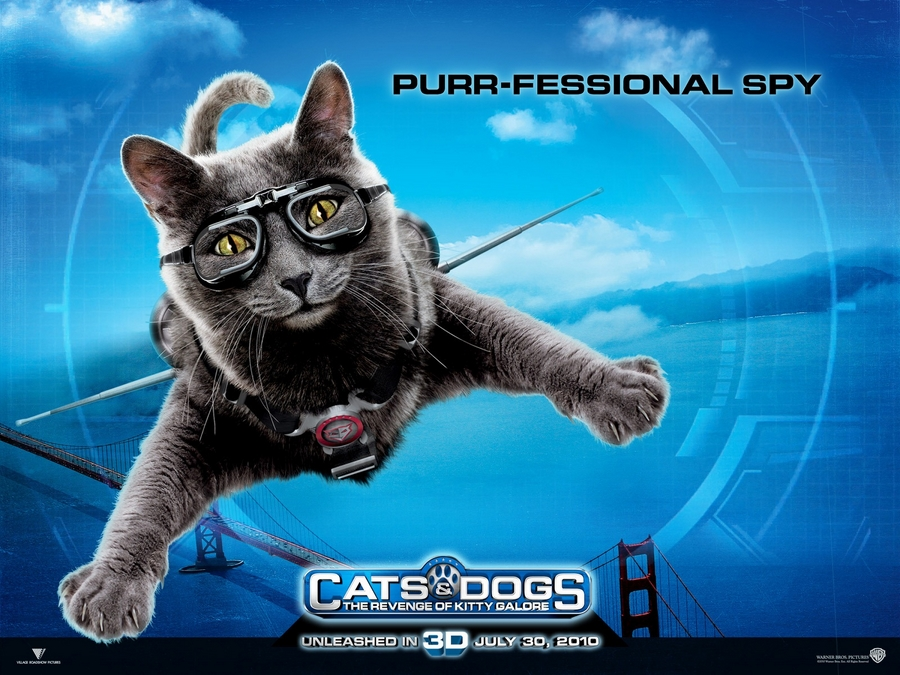 cats amp dogs the revenge of kitty galore bluray review