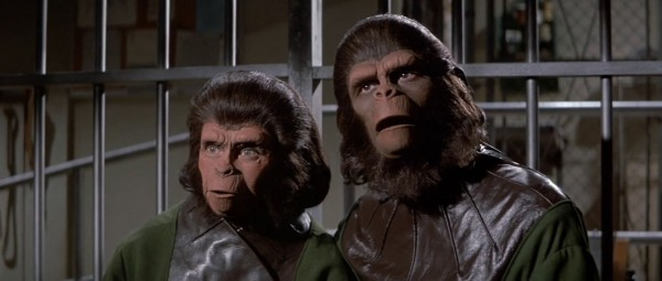 escape-from-the-planet-of-the-apes-zira-cornelius