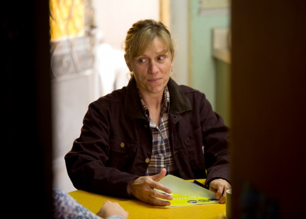 frances-mcdormand-promised-land