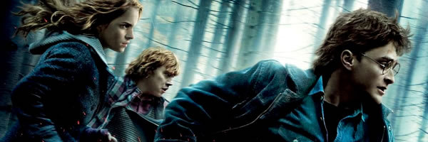harry_potter_and_the_deathly_hallows_part_1_movie_poster_slice