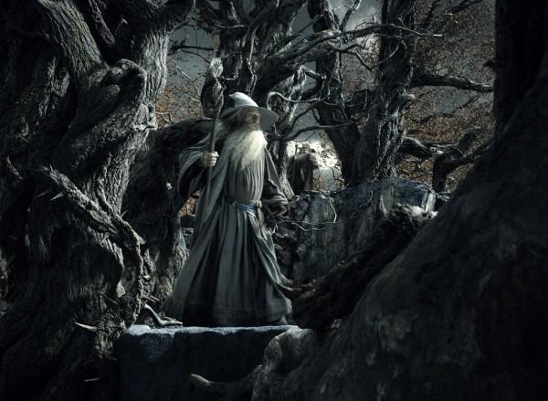 hobbit-desolation-of-smaug-ian-mckellen-2