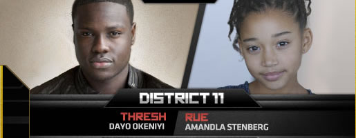 hunger-games-district-11-slice
