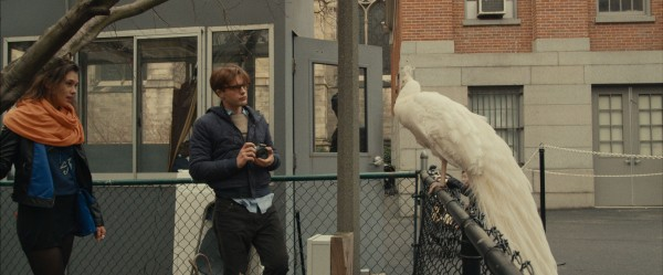 i-origins-image-astrid-berges-frisbey-michael-pitt