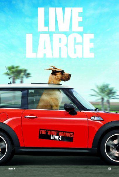 marmaduke movie poster