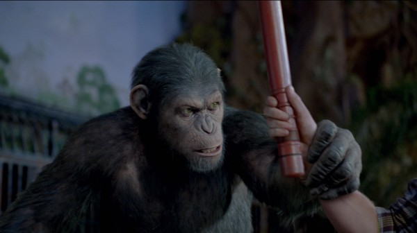 rise-of-the-planet-of-the-apes-caesar-no