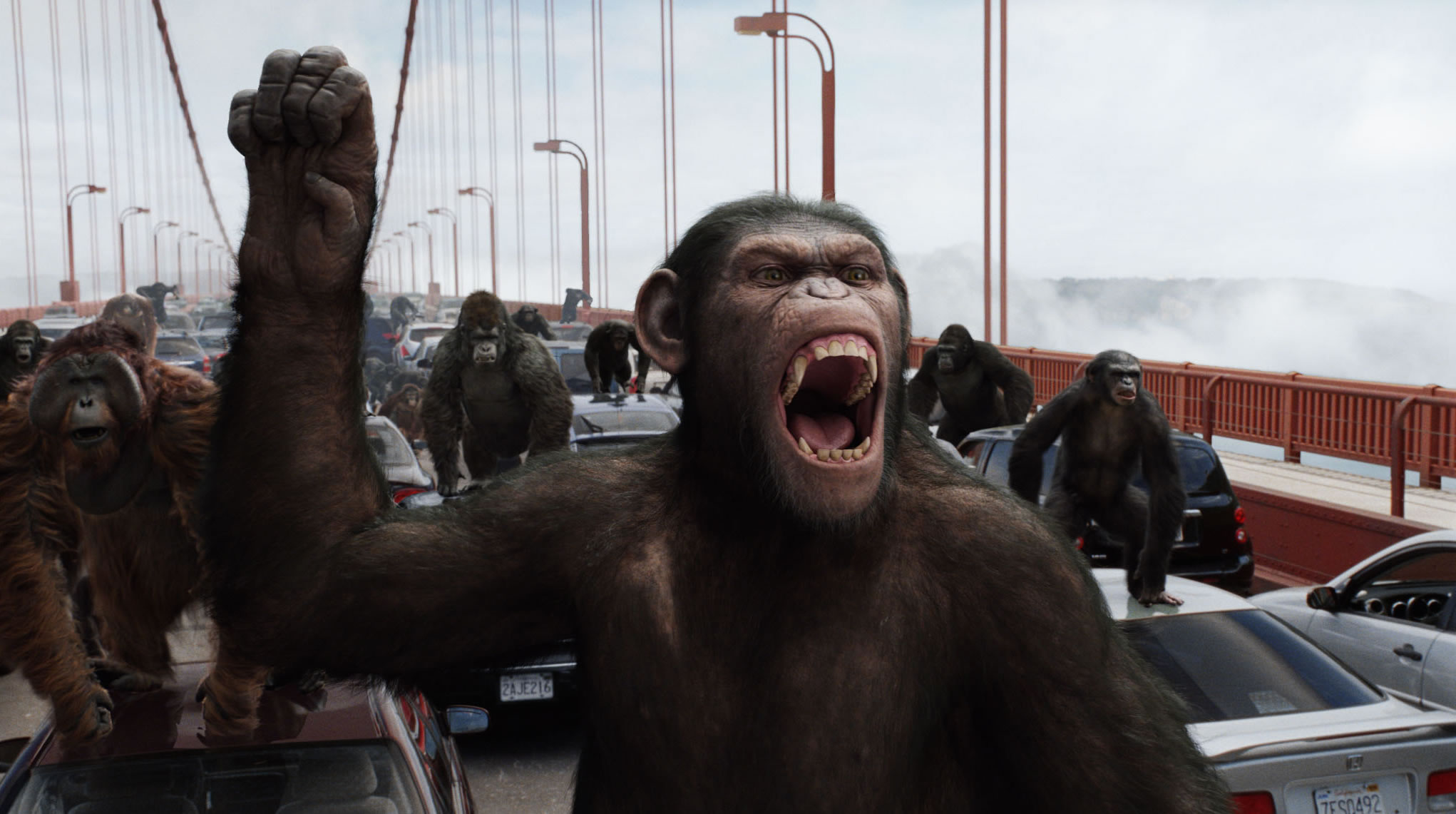 Image result for rise of planets of apes