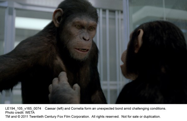 rise-of-the-planet-of-the-apes-movie-image-06