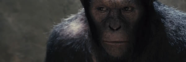 rise-of-the-planet-of-the-apes-movie-image-slice-01