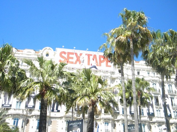 sex-tape-poster-cannes