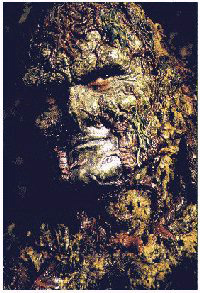 swamp_thing_the_series_image
