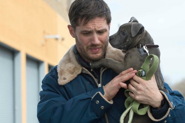 the-drop-tom-hardy-dog