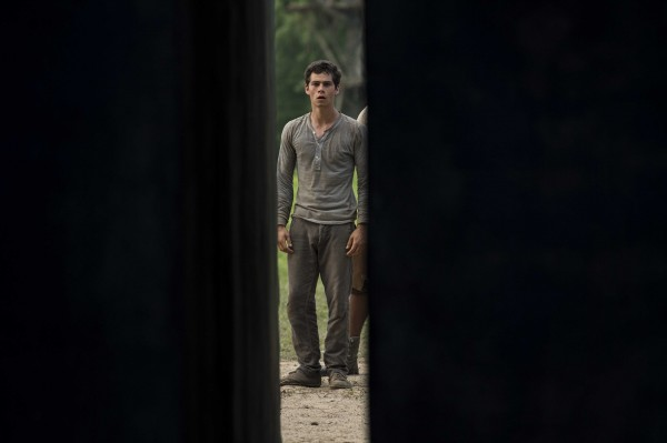 the-maze-runner-dylan-obrien-image