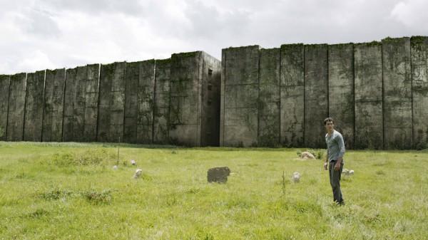 the-maze-runner-maze-image