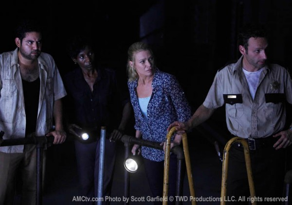 the_walking_dead_tv_show_image_laurie_holden_01