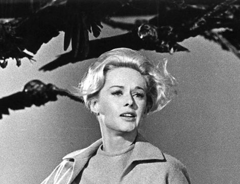 tippi-hedren-the-birds-image Hughes actually spoke to Hedren herself during ...
