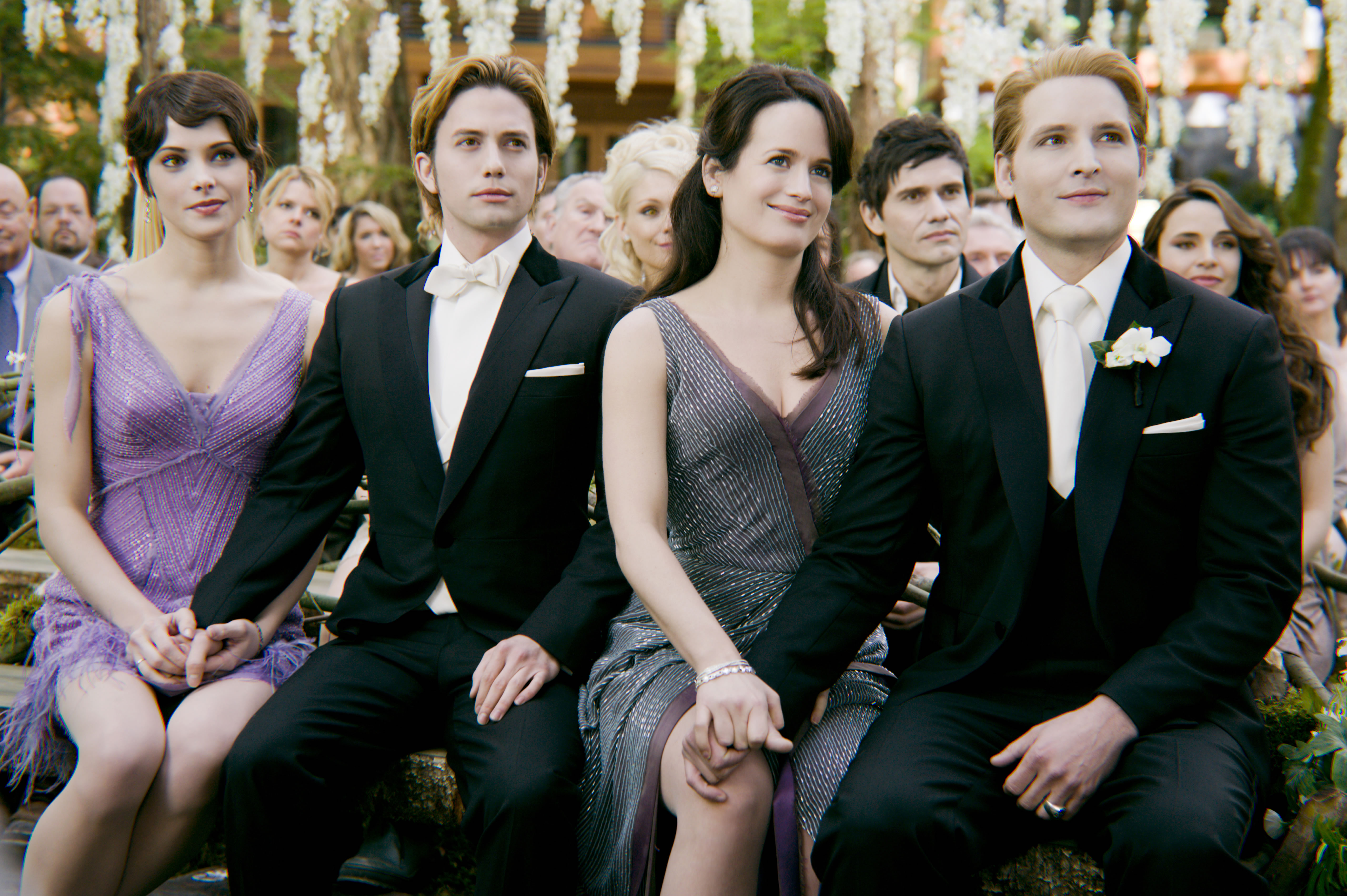 twilight breaking dawn essay Enotes plot summaries cover all the significant action of breaking dawn   breaking dawn is the fourth and last book in the twilight series by stephenie  meyer  help you comprehend your required reading to ace every test, quiz, and  essay.