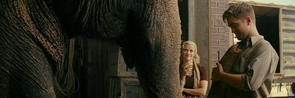 water-for-elephants-slice
