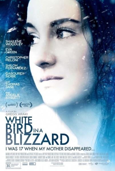 white-bird-in-a-blizzard-poster