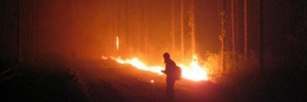 wildfire-movie-slice