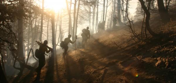 wildfire-suppression